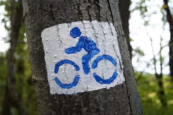 wycieczki rowerowe w polsce