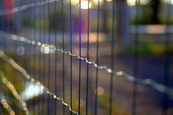 Ogrodzenie z metalowych paneli